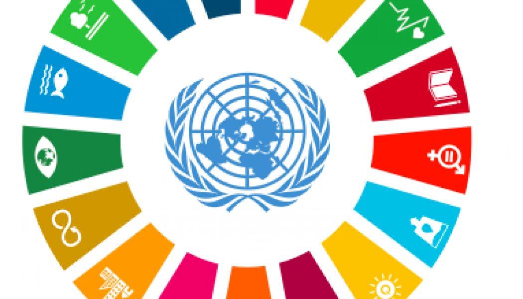 Guía de los ODS para actores políticos y ciudadanía