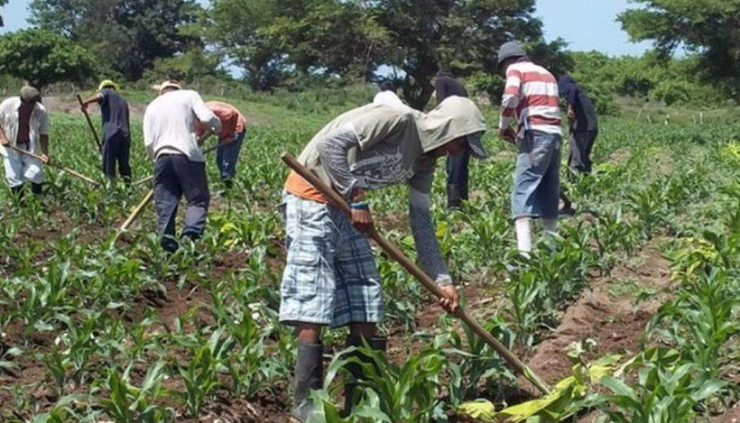 Empresas con nuevo índice para disminuir pobreza de colaboradores
